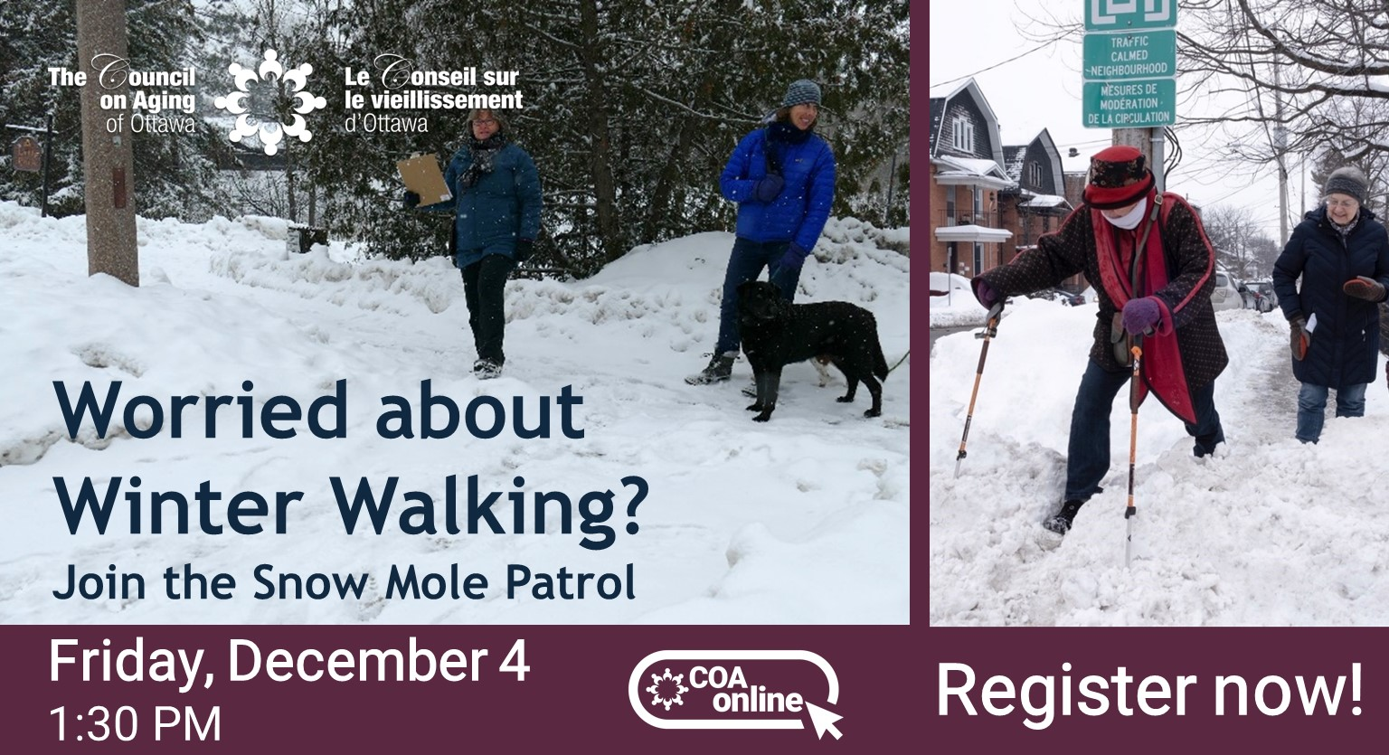 2020-12-04 Snow Moles