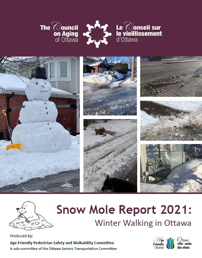 Snow Mole Report 2021 Cover